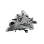 F-22 Raptor Egg Plane