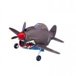 P-40 Warhawk Egg Plane