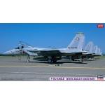 1:72 F-15J Eagle – Mystic Eagle IV 204SQ Part 1