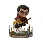 Harry Potter at the Quidditch Match –MiniCo Illusion