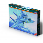 1:48 F-14A Tomcat Two Tailed Lion
