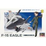 F-15 Eagle Egg Plane