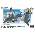 Egg plane F-22 Raptor