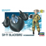 Egg Plane SR-71 Blackbird